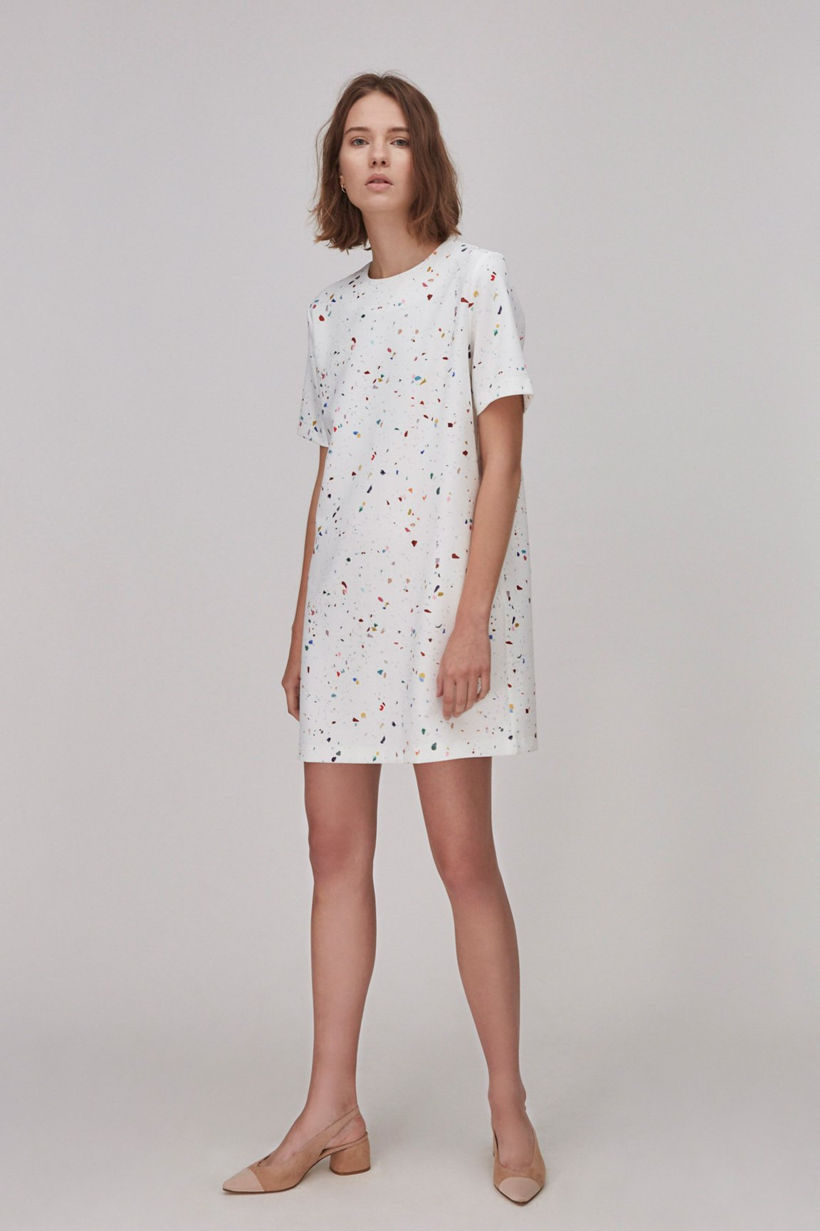 Milestone Shift Dress
